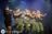 NDR2 Plaza Festival 2020: Diese Stars sind dabei